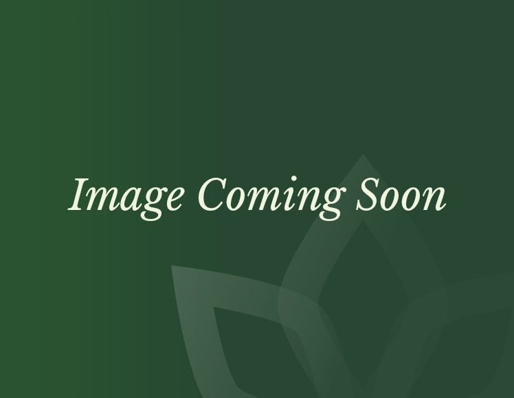 Nova - Ruxley Fireglow 6 Seat Rattan Dining Set - 1.5m Round Gas Firepit Table - Brown