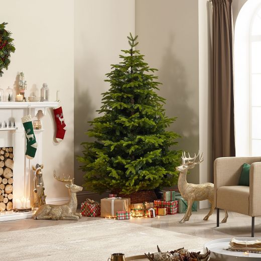 8ft Brewer Spruce Artificial Christmas Tree