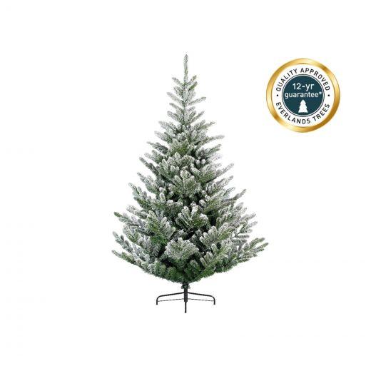 Kaemingk Everlands - 6ft Snowy Liberty Spruce Artificial Christmas Tree